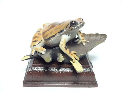 KITAN CLUB Japan narrow mouthed toad Okinawa rice frog PVC Mini Figure Figurine