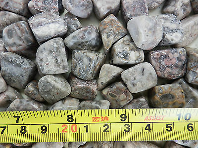 Tumbled Fossil Stones Pisolitic Limestone 2.4 to 9.2 g size pieces 150 gram Lot