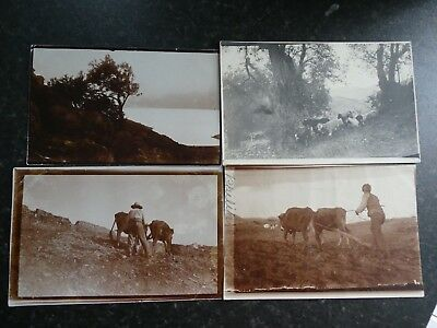 4 1912 Postcards SYRA (SYROS) GREECE  - Rural, Town, People Ploughing