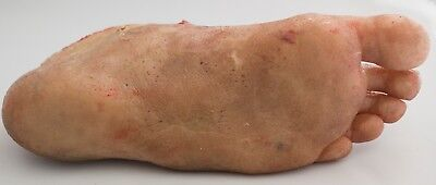 Halloween Horror Movie Silicone Rubber Zombie Foot Prop Free Shipping