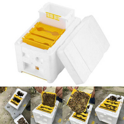 Auto Honey Beehive Frames Beekeeping Kit Bee Hive King Box Pollination Box  I