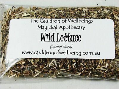 Wild Lettuce - Herbal Incense Magickal Potion Ritual Wicca Pagan