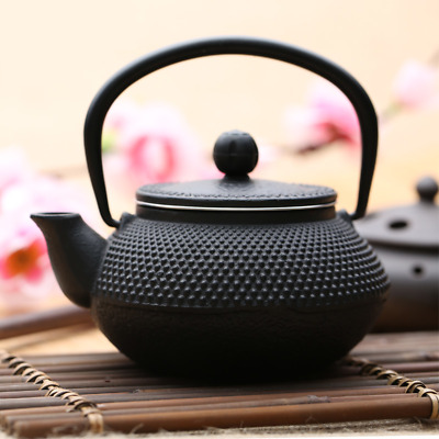 Cast Iron Teapot 0.3L Small Arare Black Japanese Pot Iron Tetsubin Teakettle
