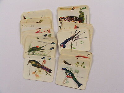 Vita Brits Birds of the World set of 36 cards 1960