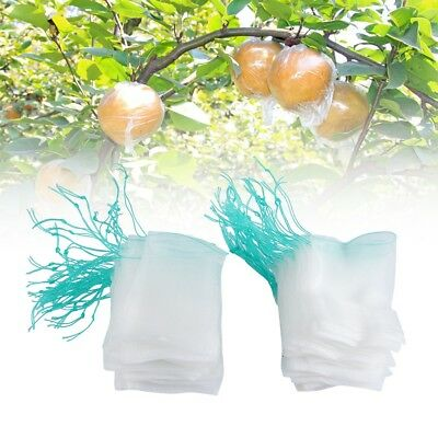 100pcs Garden Plant Fruit Protect Drawstring Net Bag Against Insect Pest Bird ZY