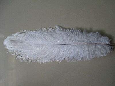 Free shipping 10 pcs white natural ostrich feathers 6-8 inch DIY decoration