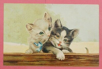 Dr Who 1908 Pc Cats Embossed Postcard #3 19737