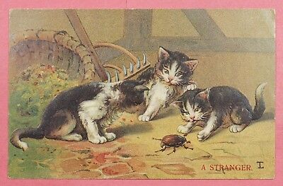 """Dr Who 1912 Pc Cats """"a Stranger"""" Bug Embossed Postcard #21 19756"""