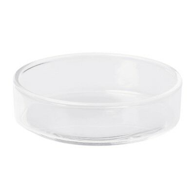 Glass Shrimp Food Round Dishes Small Fish Feeding Bowl Clear Ornamental Supplies