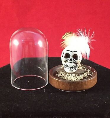 Dollhouse Voodoo Witch Doctor skull display Miniature Glass display dome gothic