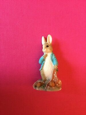 World of Beatrix Potter. Peter Rabbit With Onions