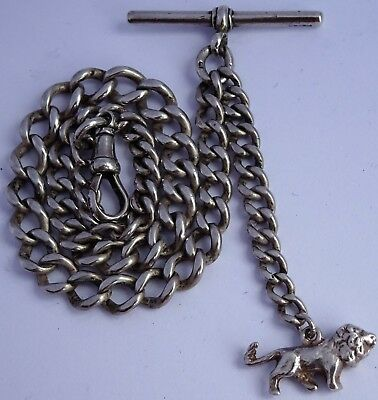 Superb antique solid silver pocket watch albert chain & silver lion passant fob