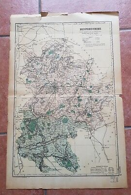 Early 20th century map Bacons Geographical Establishment BEDFORDSHIRE