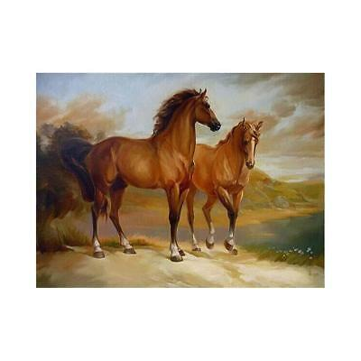 Paint By Number Kit Acrylic Oil Painting On Canvas Colorful Two Horse Home Dec