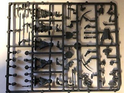 Frostgrave Soldiers Ii (2) Sprue - Female - Fantasy  - 28Mm - Shipping Now