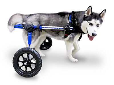 Dog Wheelchair - For Med/Lg Dogs 50-69lbs - By Walkin' Wheels - Pre-Owned***