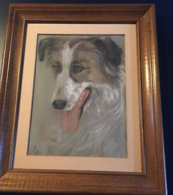 Australian Shepherd Dog Original Watercolor Painting- Vintage Framed