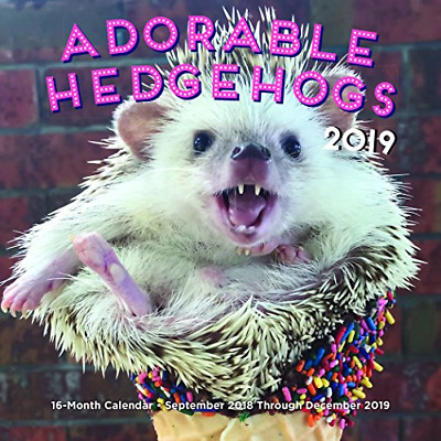 2019 Hedgehogs Mini Wall Calendar, Small Pets