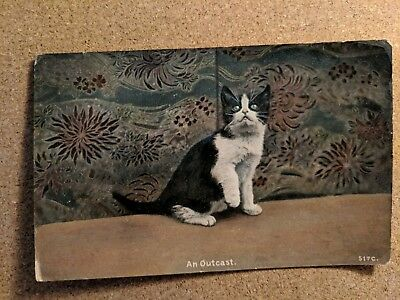 """Greetings vintage postcard. Cat. Young cat sat on couch. """"An Outcast""""."""