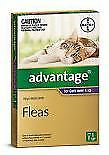 Advantage for Cats over 4kg- single pack - expiry December 2019