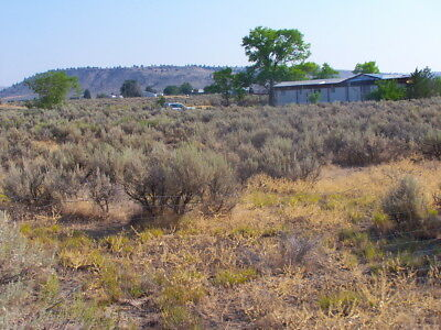 Rare 3.3 Acre N California Near Reno Includes Mobile Home~Power~Well! No Reserve