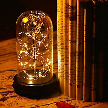 LED Lighted Beauty and the Beast Enchanted Foil Rose In Glass Dome Valentin Gift