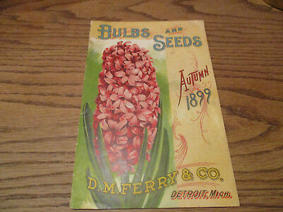 1899 D M Ferry Bulb and Seeds Catalog Excellent+++
