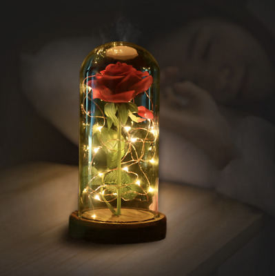Beauty and The Beast Lamp Red Enchanted Rose Artificial Flowers LED Light Petals