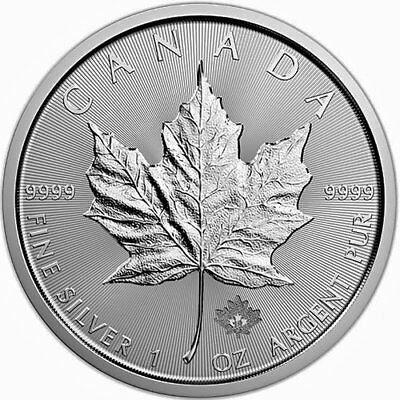 2019 1oz Silver Maple Leaf Coin in Capsule.