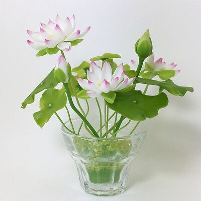 White Pink Lotus Water Lily Flower Miniature Handmade Clay Plant With Glass Pot