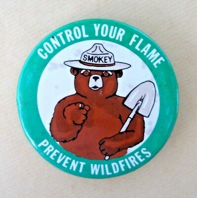 "Vintage Smokey Bear Pin,  ""Control Your Flame   Prevent Wildfires"""