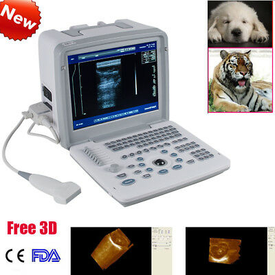 Veterinary Ultrasound Scanner Machine 3.5Mhz Convex Probe 3D Sonography CE