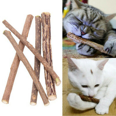 Cat Cleaning Teeth Natural Toothpaste Stick Snacks Chew Toy Catnip Pet Supplies