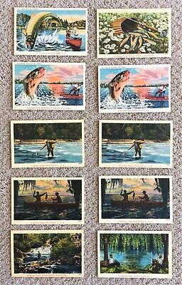 Vintage lot of 10 Fishing Theme Linen Postcards: 1940's Greetings From: Unposted