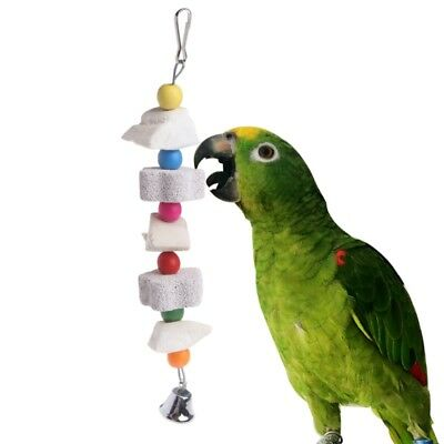 Parrot Bird Calcium Stone Chewing Toy Cuttlefish Bone Bite Grinding Teeth Supply