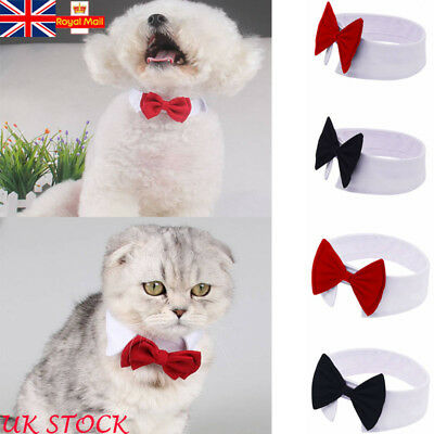 Puppy Dog Cat Pet Bow Tie Bowknot Neck Accessory Dickie Necktie Necklace Collar