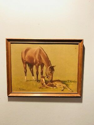 C.W. Anderson Vintage The Crooked Colt Lithograph Print 16x20 Franed