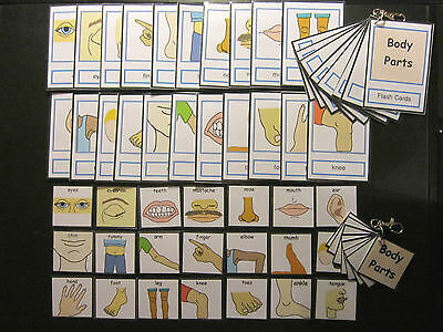 Body Parts Picture Cards -  Autism/PECS/Non verbal/Early Yrs/Visual Aid/Dementia