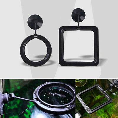 Square Circle Feeding Ring Station Floating Food Fish Feeder For Fish Tanks Safe