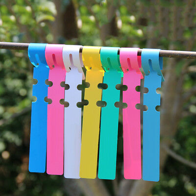 100X Plastic Plant Tree Hanging Markers Tags Nursery Seed Gardening Labels Tool