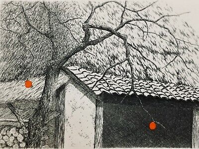 TANAKA RYOHEI COLOR Etching! - Two Persimmons (2008)