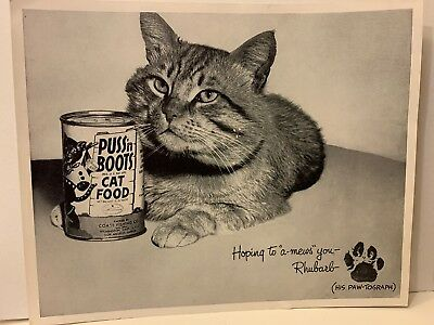 Vintage 1960s PUSS N BOOTS Cat Food Photograph Advertising RHUBARB THE CAT 8x10