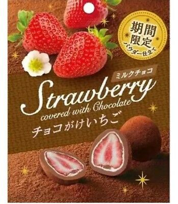 【FREE SHIPPING】Strawberry covered with Chocolate Japanese Winter limited Japan