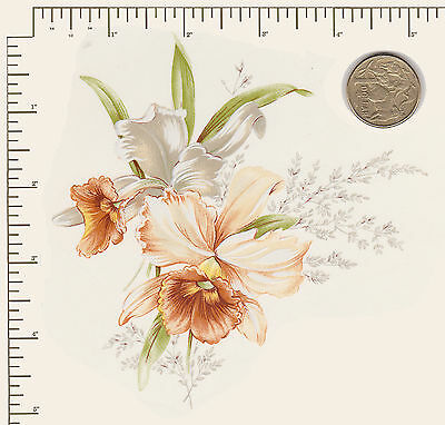 """1 x Ceramic decal. Decoupage Flowers Floral Daffodil Approx. 5 1/4"""" x 5 1/4""""  #2"""