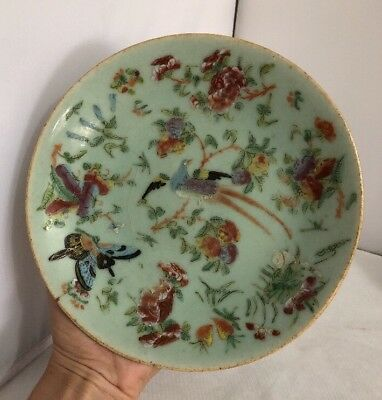 Antique Hand Painted Chinese Plate Birds & Butterfly Flowers Signed