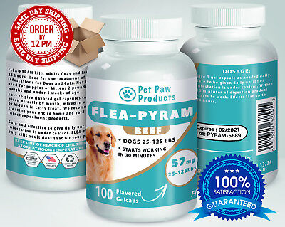 100 CAPSULES Flea Killer For DOGS 25-125 Lbs. 57 Mg BEEF Flavored Same Day Ship!