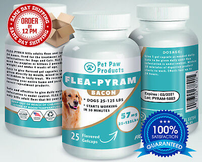 25 CAPSULES Flea Killer For DOGS 25-125Lbs 57 Mg BACON Flavored SAME DAY Ship!