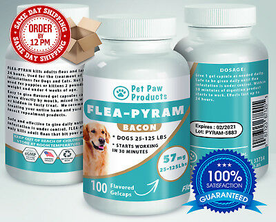 100 CAPSULES Flea Killer For DOGS 25-125Lbs 57 Mg BACON Flavored SAME DAY Ship!