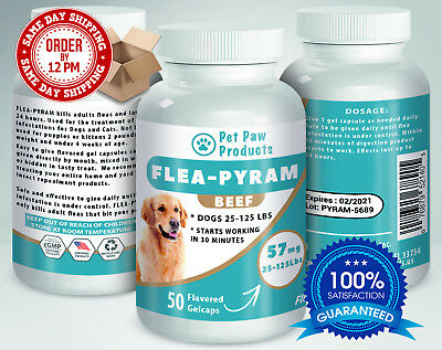 50 CAPSULES Flea Killer For DOGS 25-125 Lbs. 57 Mg BEEF Flavored Same Day Ship!