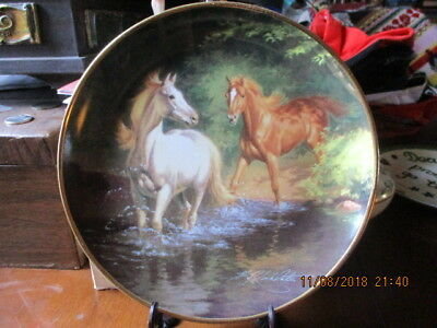 """Excellent Vintage 8""""+ British Horse Society Free As The Wind Franklin Mint Plate"""